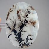 Extraordinary Out Of This World Dendritic Agate Stone