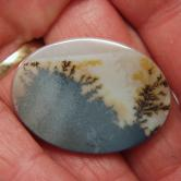 Wonder Plant Growth  Pattern Dendritic Agate Stone