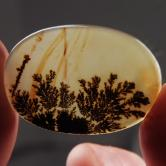 One Of A Kind Scenic Dendritic Agate Gem Stone