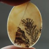 Big & Rare!  Fine Quality Scenic Dendritic Agate India GLI