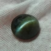 Huge & Rare! Natural Cats Eye Chrysoberyl Tanzania 16.87 ct! GLI